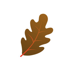 Autumn oak leaf silhouette on white background vector