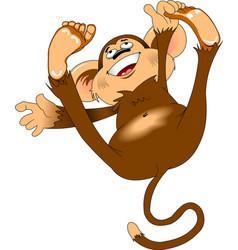 cheerful monkey vector image