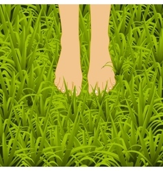 Foot over green grass vector