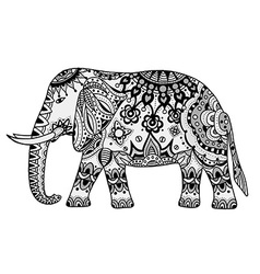 Indian elephant vector
