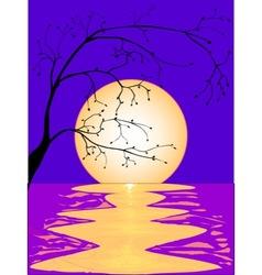 Moon Reflection vector image vector image