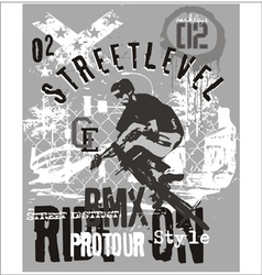 street level biker 3 vector image