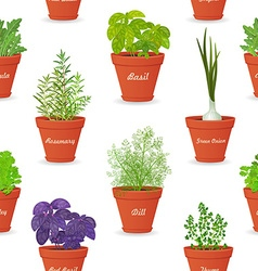 Seamless texture with herbs planted in pots for vector