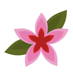 Flower tropical exotic icon vector