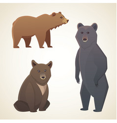 with different bears isolated on vector image