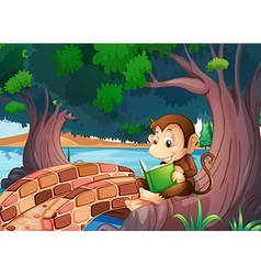 A monkey reading a book under the big tree near vector image vector image