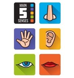 Five senses nose hand mouth eye ear vector image vector image