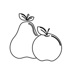 Silhouette pear and apple fruit icon stock vector