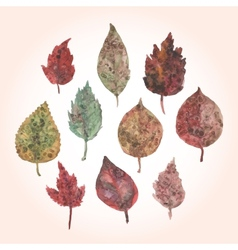Watercolor set of autumn leaves paint stains vector image