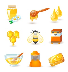 Honey and beekeeping icons vector