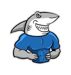 Muscular shark vector