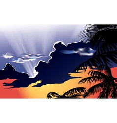 Sunset with cloudy sky vector