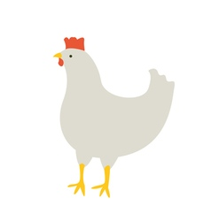 The chicken looks vector image vector image