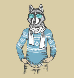 Husky in human sweatshirt vector