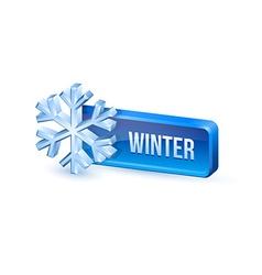 Winter button vector
