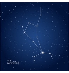 Bootes star constellation vector image