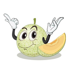 rusk melon vector image vector image