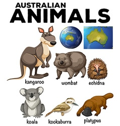 Australian wild animals and Australia map vector image