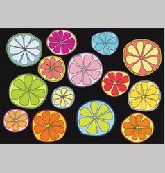 Colorful citrus on black background vector
