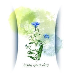 Greeting card with wild flowers vector