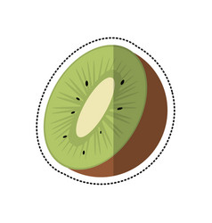 cartoon kiwi tropical fruit icon vector image