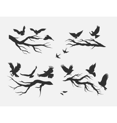 flying birds mounted on branches vector image vector image