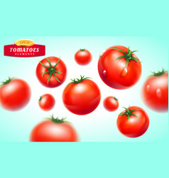 tomato realistic 3d fruit vegetable juice vector image vector image