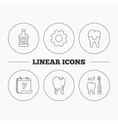 Caries dental crown and mouthwash icons vector