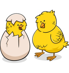 Easter chicks cartoon vector