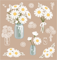 White wedding daisies in a mason jar vector