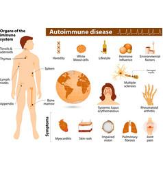 Autoimmune disease infographic vector