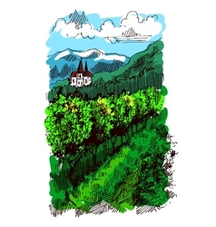 Landscape with vineyard vector