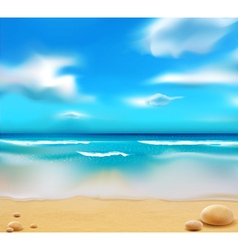beach and pebbles vector image vector image