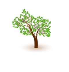 Tree casts a shadow vector