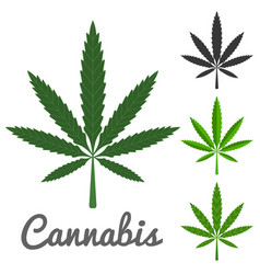Cannabis vector