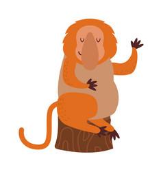 macaque monkey rare animal vector image vector image