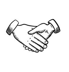 Sketch of business partnership handshake vector image