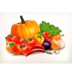 Fresh vegetables isolated on white background vector