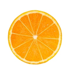 Photo-realistic orange slice vector