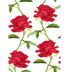 Seamless background with pink roses with stem vector