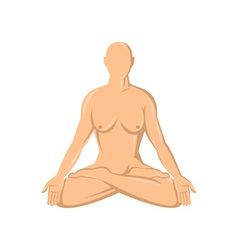 Female human anatomy yoga lotus vector