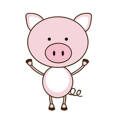 Colorful picture cute pig animal vector