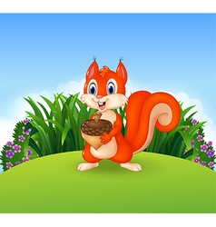 Cute little squirrel holding nut vector image vector image