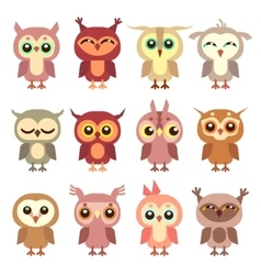 Cute owl flat characters set vector image vector image