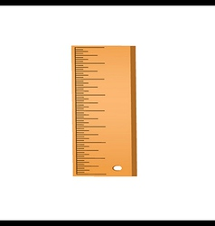wood ruler vector image