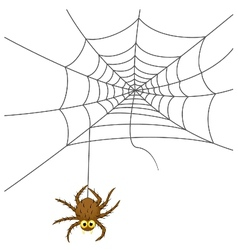 Spider web cartoon vector image