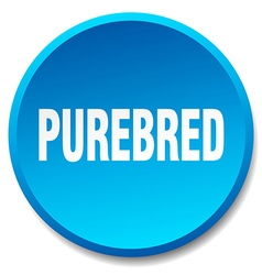 Purebred blue round flat isolated push button vector