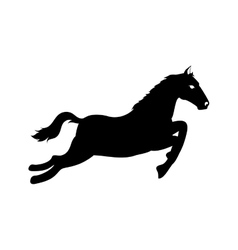 Horse ride equine icon graphic vector