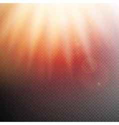 Sunlight or burst special light effect eps 10 vector