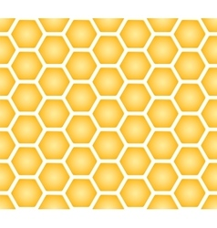 Seamless texture of honeycomb vector